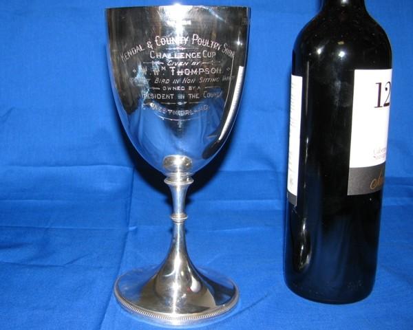 Silver Presentation/ Cup Goblet